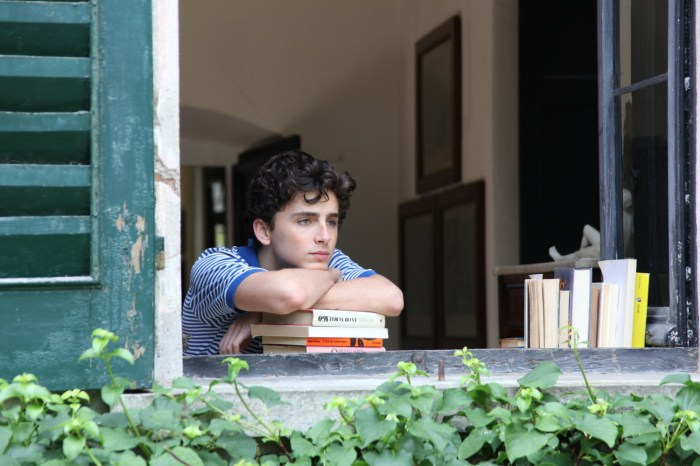 Timothée-Chalamet-Call-Me-By-Your-Name-movie